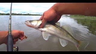 ДОНКИ ОТВОДНОЙ ПОВОДОК Рыбалка на ОКЕ 2021