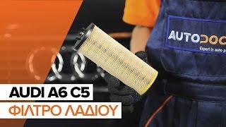 Πώς αλλαζω Φίλτρο λαδιού AUDI A6 Avant (4B5, C5) - δωρεάν διαδικτυακό βίντεο