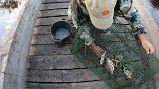Рыбалка На Мордушку Ловушка для рыбы МОРДА КУБАРЬ ВЕНТЕЛЬ
