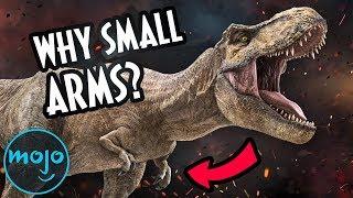 T-Rex: The Most Badass Dinosaur Ever