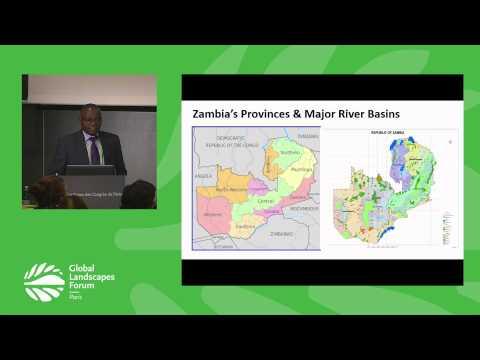 REDD+ Forest Reference Emission Levels GLF 2015