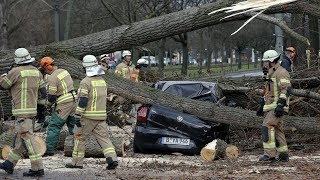 Ураганный ветер в Западной Украине: последствия