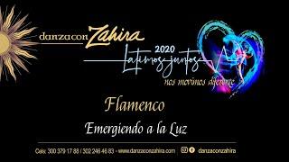 Latimos Juntos - Flamenco 2020: Emergiendo a la luz