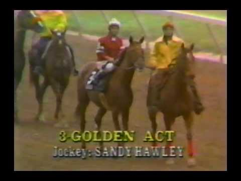 1979 Preakness Stakes - Spectacular Bid