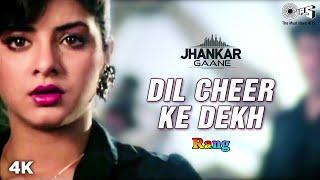 Dil Cheer Ke Dekh ((Jhankar)) Kumar Sanu | Kamal Sadanah | Divya Bharti | Rang | 90's Iconic Song