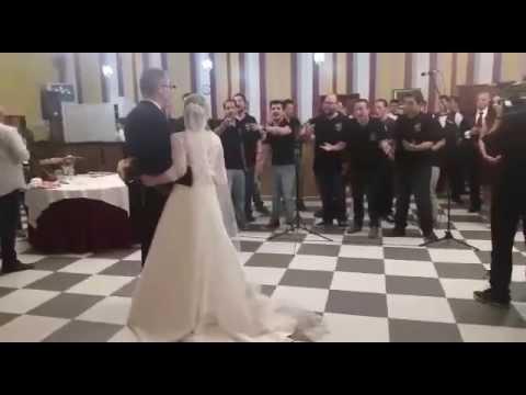 Todos los besos-Comparsa Los Lagartos-Boda de Fco. Javier y Ana