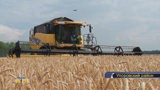 Сельскохозяйственные предприятия Упоровского района приступили к обмолоту озимых зерновых