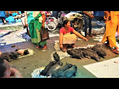 Kokrajhar Market Scene (India, Assam)