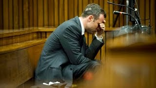 Oscar Pistorius murder trial: The key witness evidence