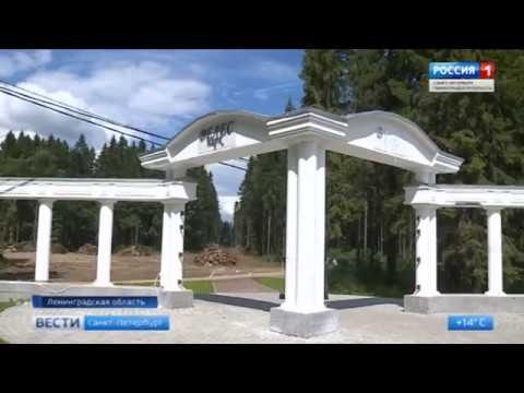 Жители города Волосово не поняли, что происходит с главным городским парком