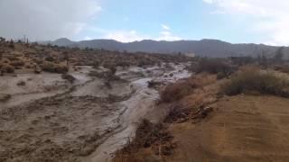 Wall of water in Joshua tree
