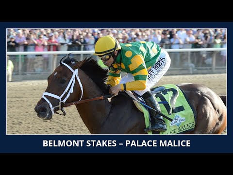 Palace Malice - 2013 Belmont Stakes (G1)