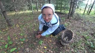 6 соток это хорошо но надо же и по грибы сходить. Путешествие в лес.
