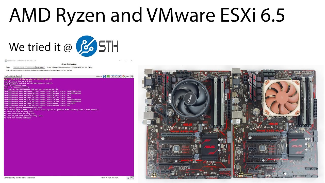 AMD Ryzen with VMware ESXi a Pink Screen of Death
