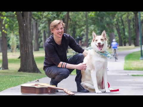 I GOT A DOG! [CC] || Jeff Miller