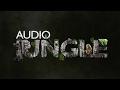 Sound - Magic Wind 1 | AudioJungle Download