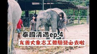 【泰國清邁ep.4】大象友善志工體驗!洗小飛象真的太可愛OMG!