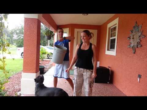 Amanda Ice bucket challenge.