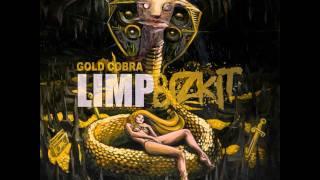 Limp Bizkit - Douche Bag [Gold Cobra 2011 HD-HQ]