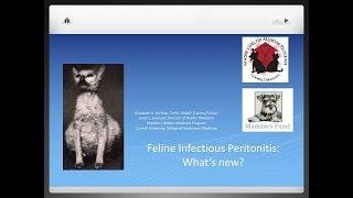 Feline Coronavirus and FIP: What's New? - conference recording