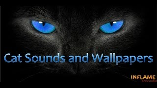 Cat Sounds and Wallpapers for Android™