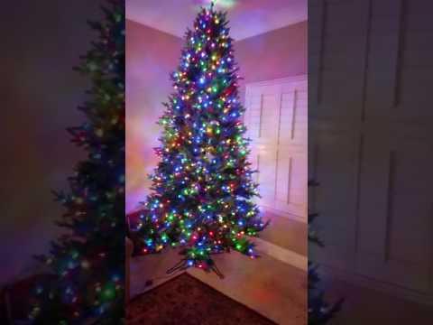 Costco 9 Ft pre-lit just cut Aspen Fir Christmas tree - YouTube