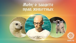 Moby о защите прав животных