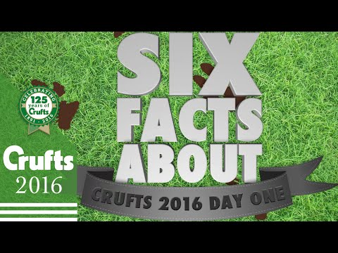 6 Facts About Day 1 | Crufts 2016