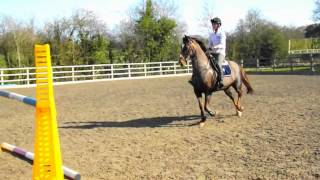 Jumping with Lady Legend upto 1m45.. 10/03/12