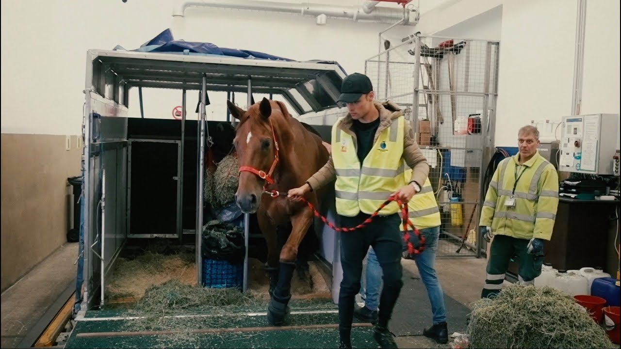 flying-my-horse-across-the-world-episode-4-chasing-the-dream