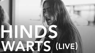 Hinds - Warts (Pile TV Live Sessions)