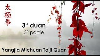 3° duan - 3° partie - Yangjia Michuan Taiji Quan