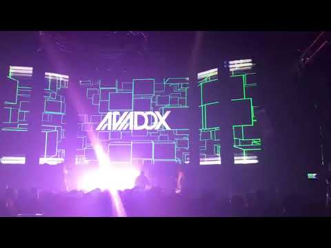 AVADOX live / TAIWAN 2017 (Taichung 18TC)