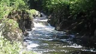 Cenarth Falls On A Sunny Day