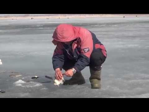 рыбалка на оз черталы омской области
