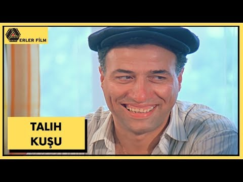 Talih Kuşu | Kemal Sunal, Yasemin Yalçın | Türk Filmi | Full HD