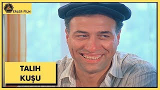 Talih Kuşu  Kemal Sunal, Yasemin Yalçın  Türk Filmi  Full HD