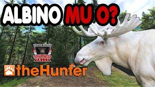 The Hunter Classic Türkçe  Albino mu O ?