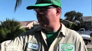 49er Pest Control   Termite Control   Placerville California