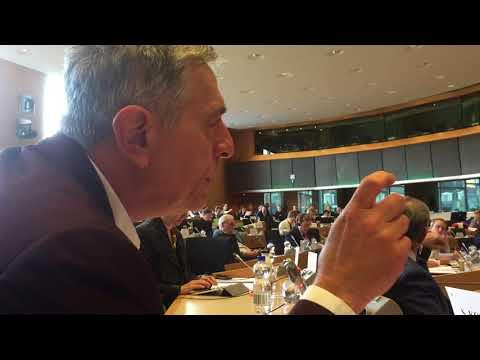 Kouloglou on Maltese corruption | Public Hearing TAX3