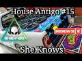 House Antigo #15 (She Knows)
