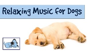 Relaxing music for dogs! Música relajante para los perros! Musique relaxante pour chiens!