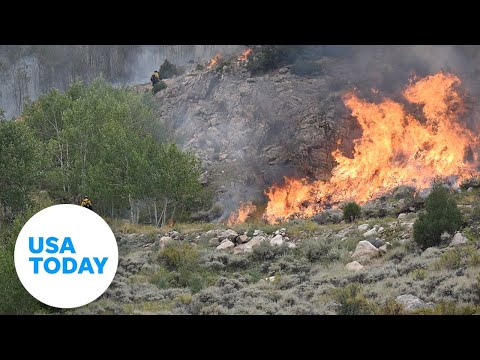 Cameron Peak Fire, Largest Wildfire In Colorado History, Spreads Across The State | USA TODAY