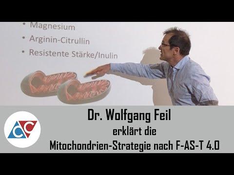 Leistungssprung Im Ausdauersport - Dr. Feil Erklärt Die Mitochondrien-Strategie