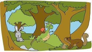 Развивающий мультик для детей. Сказочный лес. Как нарисовать дракона, белку, зайца.(В этом видео мы вам покажем развивающий мультфильм про сказочный лес. Здесь вы можете увидеть как нарисоват..., 2015-11-11T00:56:46.000Z)