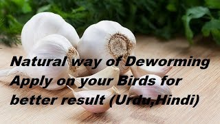 Natural Way of De worming (Urdu,Hindi)