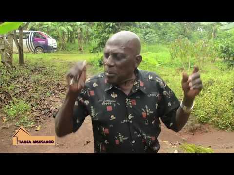 TAASA AMAKAAGO DD-HARUNA MUKIIBI ATEEBEREZA OKUBA N'OMWANA GWE BAAMUGABAKO