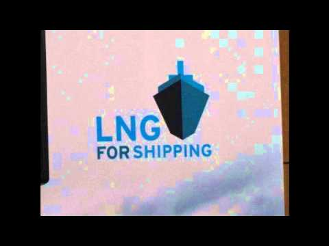 """ LNG for Shipping – Risks and Opportunities""  Q & A"