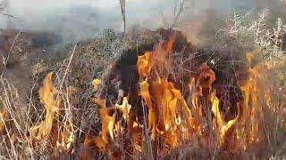 שריפה בקיבוץ בארי