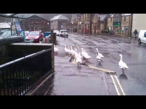 Sowerby Bridge floods, Calderdale, West Yokshire 9am 26/12/15